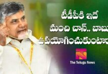 tdp not fighting efficiently on ysrcp