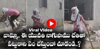 Viral Video girl catches The snake with hands