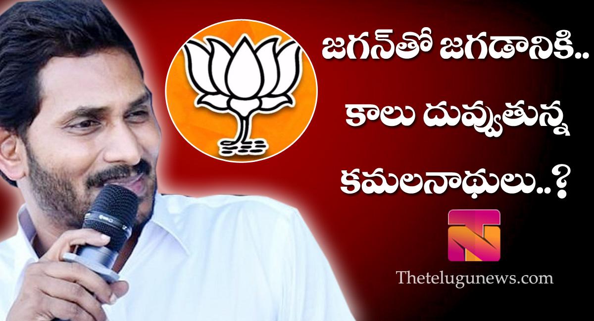 direct political will start between yS jagan and bjp