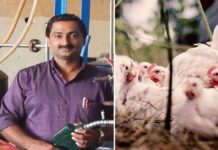 kerala veterinary doctor invents biodiesel from slaughtered chicken waste