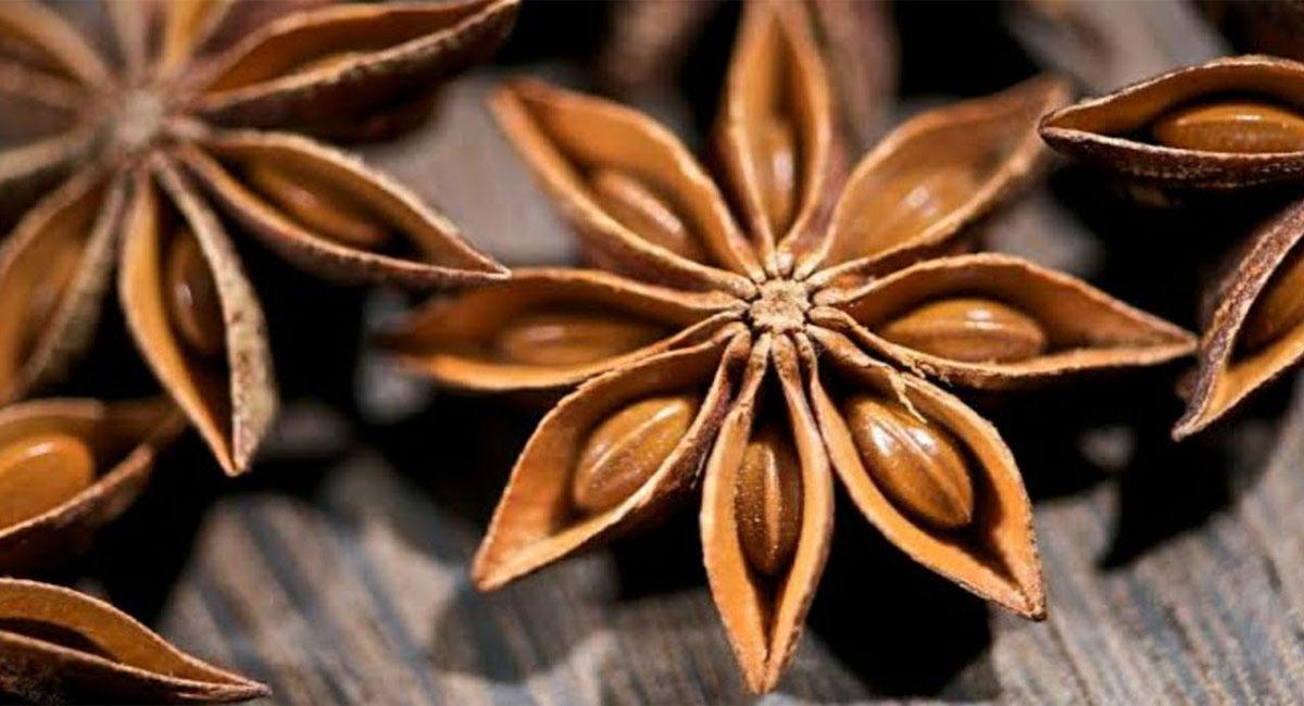 star anise anasa puvvu health benefits telugu