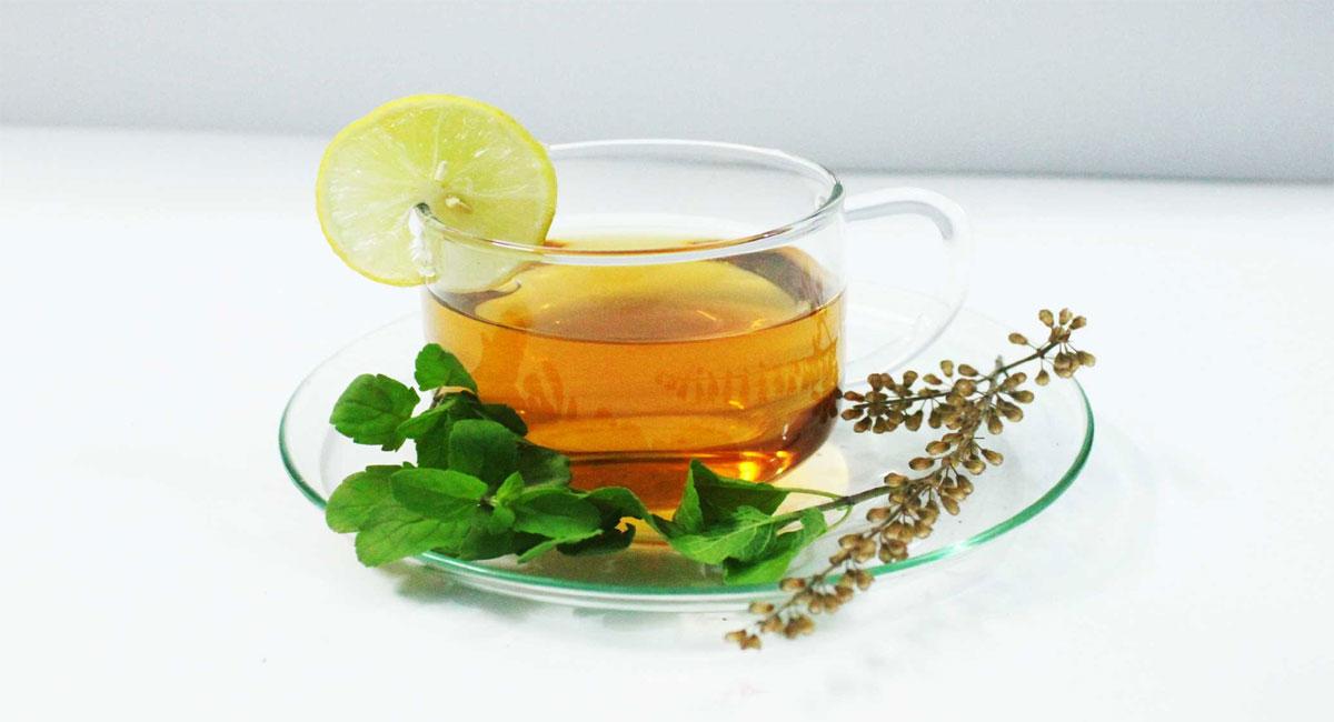 tulsi tea health benefits for weight loss telugu